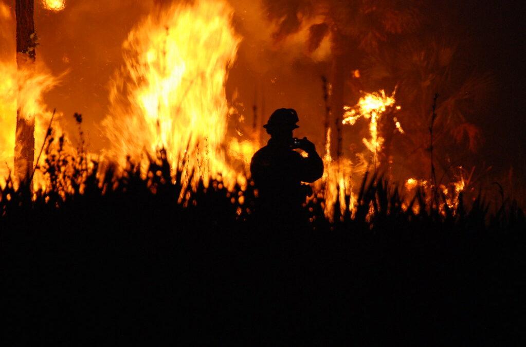 Les feux de foret, une menace pour l'avenir de l'humanité?